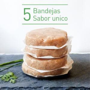 Burger FIT 5 bandejas unico sabor