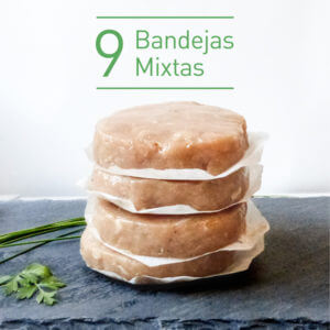 Burger FIT 9 bandejas mixtas