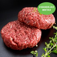Burger Saludable - 9 bandejas mixtas