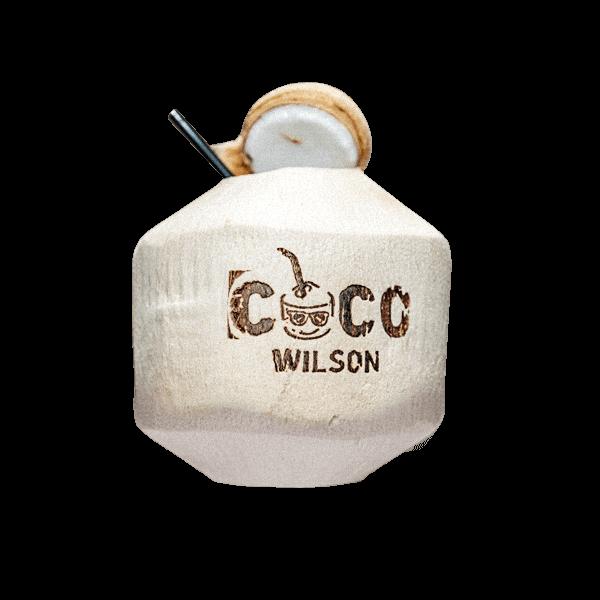 Resultado de imagen de coco wilson
