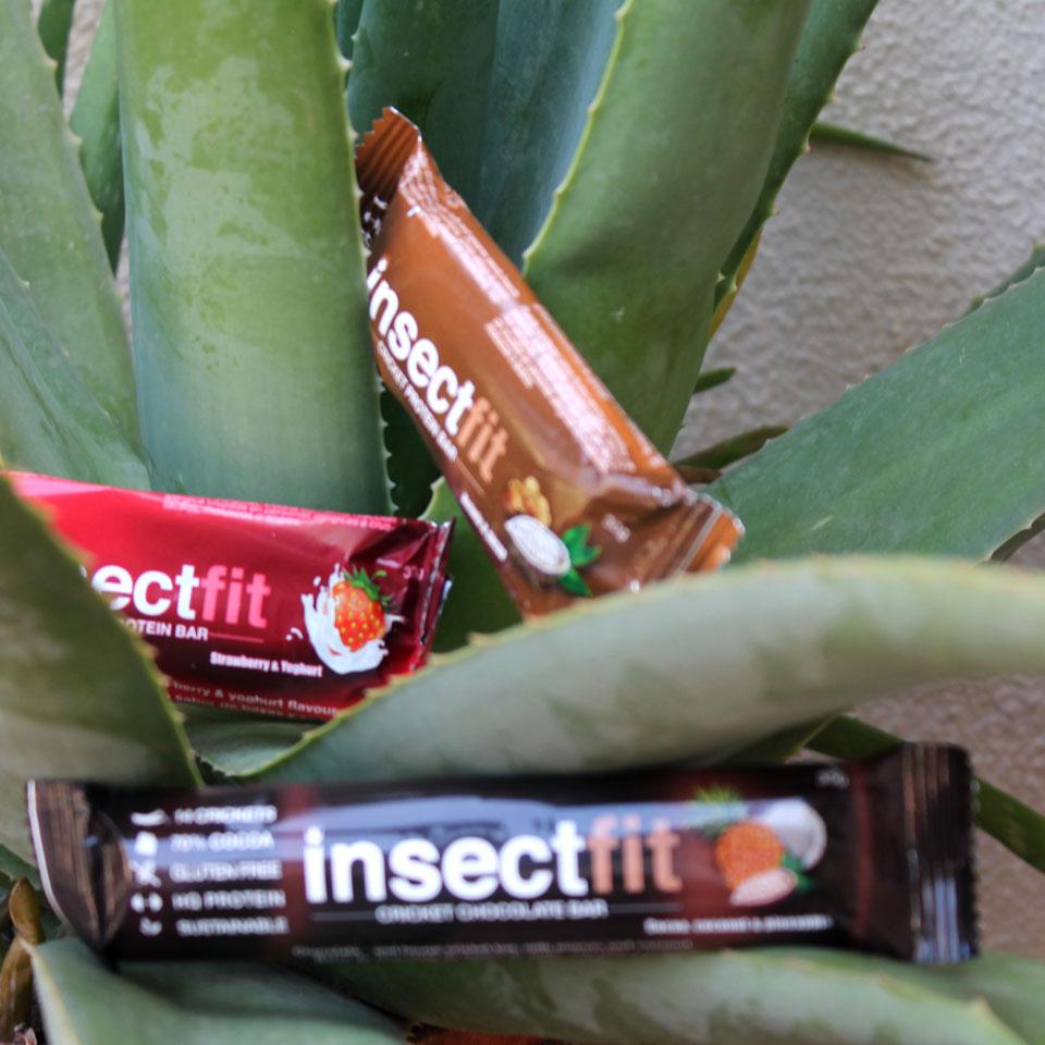 Beneficios de los insectos comestibles