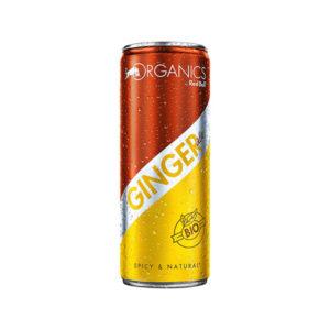 Organics Ginger Ale 250 ml